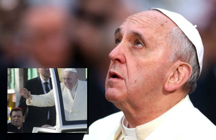 Papa - Norberto